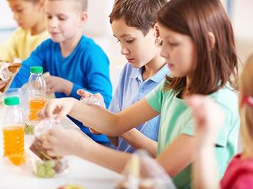 Curso de Monitor de Comedores Escolares