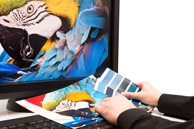 Curso de Experto en Diseño con Photoshop CS