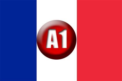 A1: Francés Online