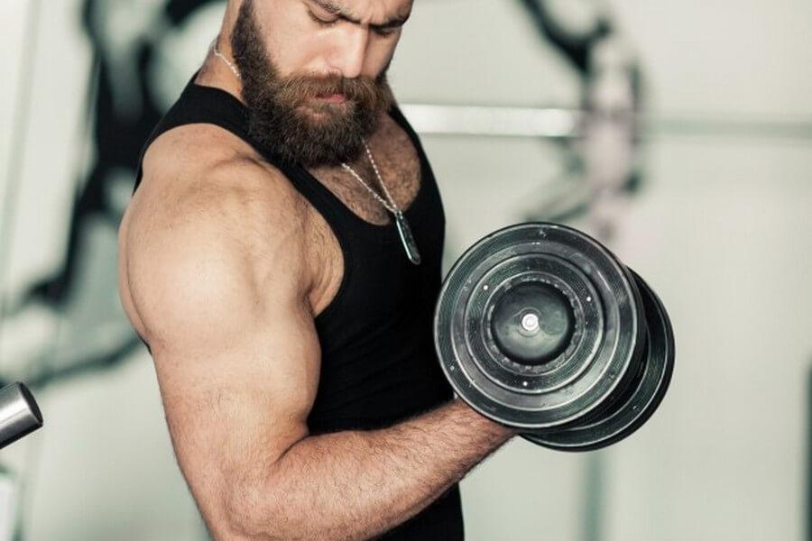 Postgrado de Entrenador Personal en los Principios Nutricionales de la Musculación y Fitness